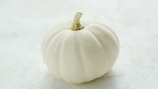 Fresh ripe white pumpkin with dry stem placed on white background