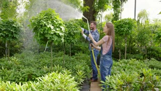 Gardeners man and woman standing together and spraying water on flowers with hose in the garden.