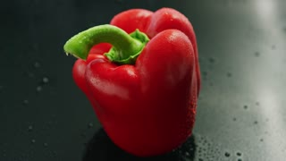 Red ripe pepper with droplets on surface placed on gray background