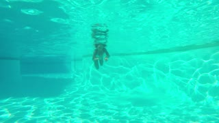 Shot taken underwater of young content woman in white bikini diving and swimming in blue water of pool looking at camera.