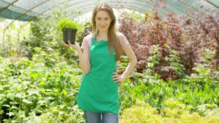 Smiling young female gardener standing with potted plant in the greenhouse and looking at camera.