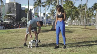 Sportive man playing with dog while training with African-American woman in summer tropical park taking rest.