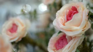Beautiful white roses in a bouquet - interior decoration