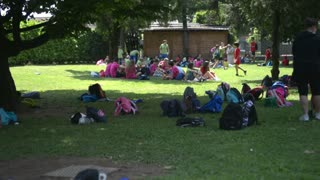 Children rest on the grass in the shadow of trees and palms in park