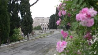 Coliseum in spring - Rome, Italy