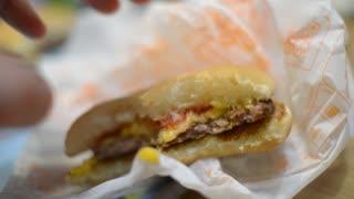 Eating a fast food - hamburger, potato, tomato