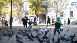 Flock Of Pigeons Doves In Town - little boy runs