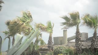 Italy Lido coast - Tyrrhenian sea in stormy weather. Waves fall on Beach.