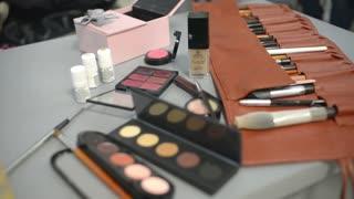 Make-Up Artist Taking Eye Shadows From Makeup Eyeshadows Palette.
