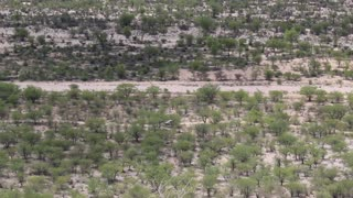 Namibia, Africa - white Jeep SUV goes on savanna