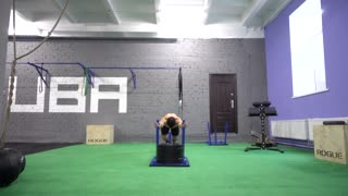 People Training In Crossfit Gym. Dragging a lot of weight.