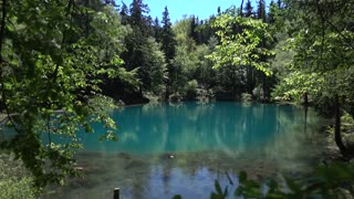 Blue Lake on the summer green Forest - sunny day