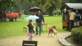 Family Father and Son walk with big Dog under Rain in a Park