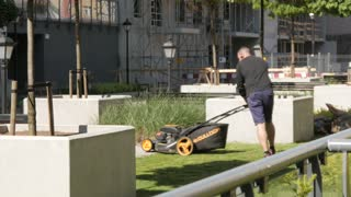 Man Gardener Cut Grass Lawn With Mower Cutter On Sunny Day