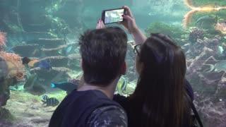 People under water Make Photo with Mobile Smart Phone - Oceanarium And Underwater Zoo in Genova Italy