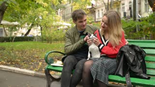 Young Man and Woman sitting on a Bench in Park and playing with a Cat