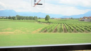 View on the fields and vineyards from high-speed train Milan - Venice