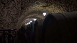 Wine Cellar With Many Wine Barrels