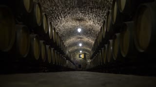Wine Cellar With Many Wine Barrels