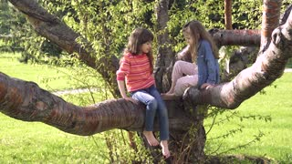 childs is climbing the tree. Little girls is playing in the outdoor. Adventure of a childrens. Happy carefree childhood.
