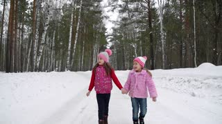 little girls go through the woods and holding hands. children walk. Slow Motion