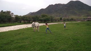 two little girls running around the lawn around horses. children play outdoors in a meadow. slow motion