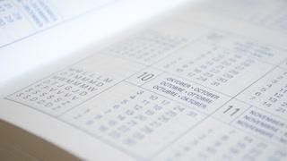 Diary, date book.