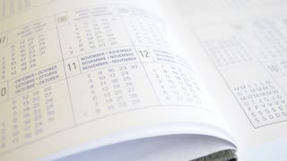Diary sheets, datebook