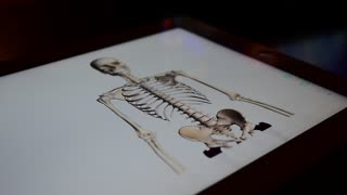 Medical application, educational 3D model on the tablet