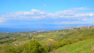Panoramic landscape. Green hill and sea on the background. Nature background for relax and spa theme. Landscape of Istria, Adriatic sea coast, Slovenia