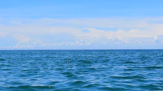 Sea, sky video background
