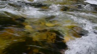 Stream water background