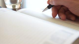 Writing hand, diary