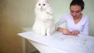 Bride thinking about coming wedding and drawing dream house, white cat sitting near young woman