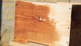 Close-up Wood painting with a brush with the brown color. DIY do it yourself concept