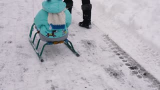 Family sleigh ride through snow forest park. Happy smiling mother pulls kid son on sled in snowy woods, fun winter holidays
