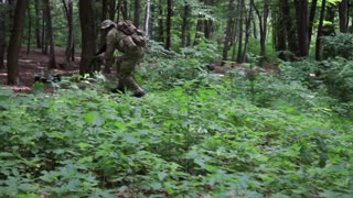 Guerilla partisan warriors attacking aiming in forest ambush carrying their guns. War battlefield maneuvers training