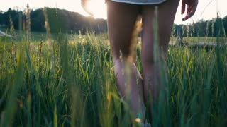 Young beautiful woman in sneakers and shorts walking on meadow with green grass nature slow motion video. Girl in the field legs at sunset close-up on the grass sunlight lifestyle silhouette.