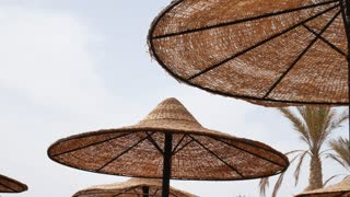 Palm and sun umbrellas on beach in windy day. Symbol of holiday vacation