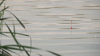A float for fishing rods in the water while fishing. A float in the water signals that the fish is biting. Float on the waves close up.