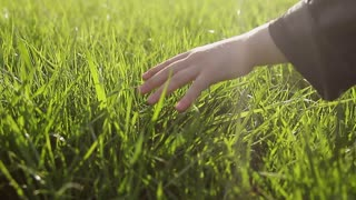A hand touches grass lightly in the green countryside.