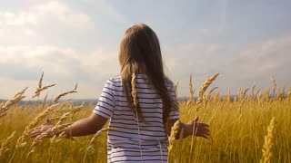 Adorable little girl playing in the wheat field on a warm summer day. Preschooler girl walking happily in wheat field on warm and sunny summer day.