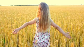 Adorable little girl playing in the wheat field on a warm summer day