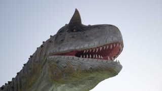 close up head of Tyrannosaurus