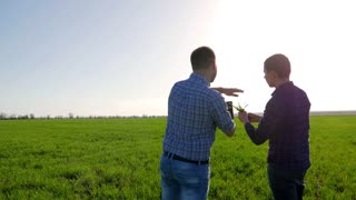 Couple of farmers in field using digital tablet. Two farmer standing in a field and looking at tablet. They are examining corp. Crop plant examined by two farmers.