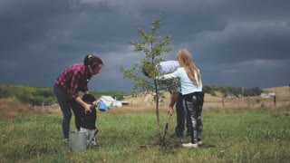 Family of four planting a new tree in his garden. The concept is to plant trees, a friendly family.