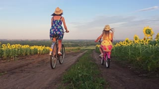 Family on bicycles in nature. Mom and daughter on bicycles on a field of sunflowers. Mother and daughter in hats are walking through sunflowers field. The concept of the family.
