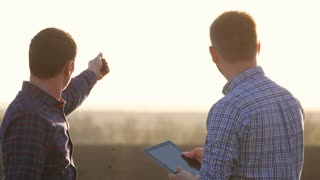 Farmers work in the field of wheat, communicate, look at the tablet. Two farmers talk in the field, use a tablet.