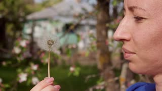 Happy beautiful woman blowing dandelion in the garden. Cute girl playing with blowball.