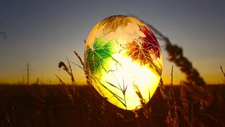 Hope concept, emotions and feelings, colorful balloon in the field, background
